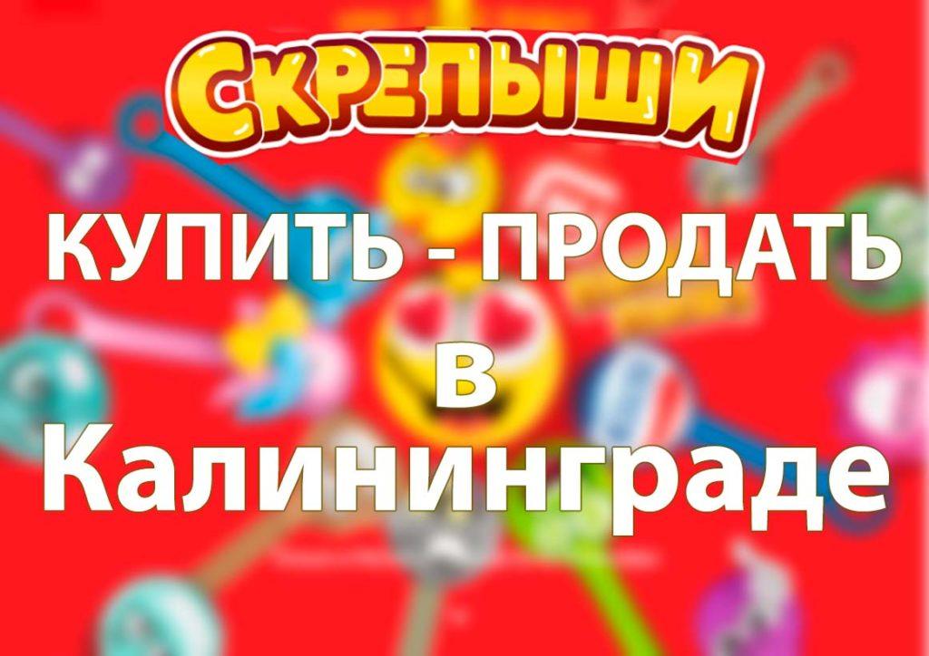 Купить или продать скрепышей в Калининграде